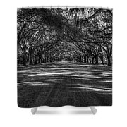 Wormsloe Plantation 2 Live Oak Avenue Art Shower Curtain