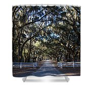 Wormsloe Avenue #2 Shower Curtain