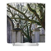 Wormsloe Welcome Shower Curtain