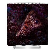 Wounded Miracle Shower Curtain