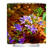 Wp Floral Study 4 2014 Shower Curtain