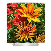 Wp Floral Study 5 2014 Shower Curtain