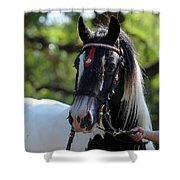 Wr The Big Son Of Bok Shower Curtain
