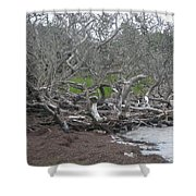Wrack And Driftwood Shower Curtain