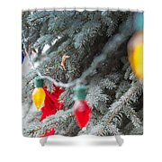 Wrap A Tree In Color Shower Curtain