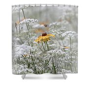 Wrapped In Queen Anne's Lace Shower Curtain
