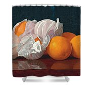 Wrapped Oranges On A Tabletop Shower Curtain