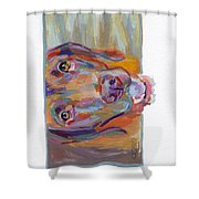 Wrigley Shower Curtain