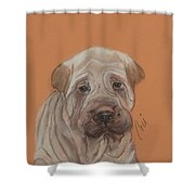 Wrinkles Shower Curtain