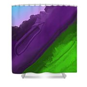 Wtf 1 Shower Curtain