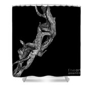 Wudu 1 Xxxxiv Shower Curtain