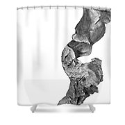 wudu 2 XXXXII Shower Curtain