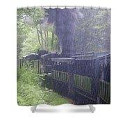 Wv Passenger Car 16 Shower Curtain