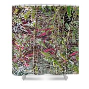 WWW Shower Curtain