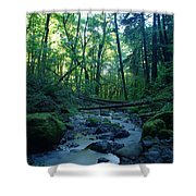 Wyeth Creek Shower Curtain