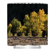 Wyoming Autumn Color One Shower Curtain