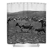 Wyoming: Cowboys, C1890 Shower Curtain