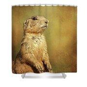Wyoming Prairie Dog Shower Curtain