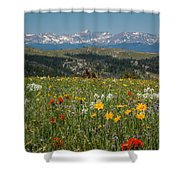 Wyoming's Winds Shower Curtain