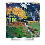 Wyomissing Creek Shower Curtain