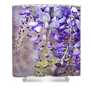 Wysteria Shower Curtain
