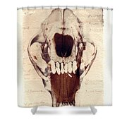 X Ray Terrestrial Shower Curtain
