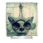 X Ray Terrestrial No. 13 Shower Curtain by Jane Linders