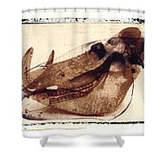 X Ray Terrestrial No. 6 Shower Curtain
