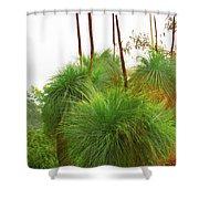 Xanthorrhoea Shower Curtain