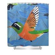 Xantus Hummingbird Shower Curtain by Candace Shrope