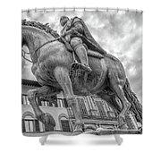 Cosimo De Medici Shower Curtain