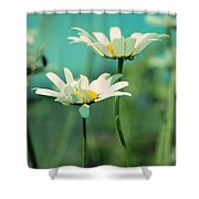 Xposed - S07b Shower Curtain by Variance Collections