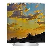 Y Cactus Sunset 10 Shower Curtain