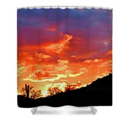 Y Cactus Sunset 6 Shower Curtain