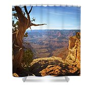 Yaki Point Shower Curtain by Susan Rissi Tregoning