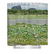 Yala National Park Shower Curtain