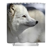 Yana The Fox Shower Curtain