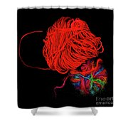 Yarn Leftovers Shower Curtain