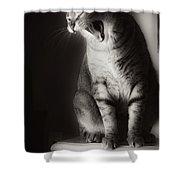 Yawning Shower Curtain