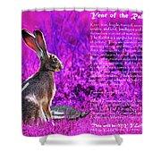 Year Of The Rabbit 2011 . Magenta Shower Curtain