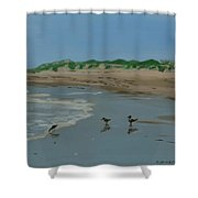 Year-rounders Shower Curtain