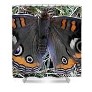 Yearning To Fly Shower Curtain