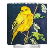 Yelllow Warbler Shower Curtain