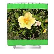 Yello Hibiscus Shower Curtain