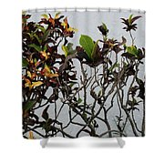 Yellogreen  Shower Curtain