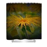 Yellow 2 Shower Curtain