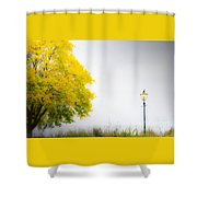 Yellow And Golden Shower Curtain