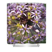 Yellow And Mauve Shower Curtain