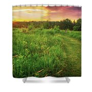 Retzer Nature Center - Yellow And Purple Summer Sunset  Shower Curtain
