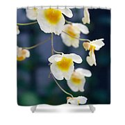 Yellow And White Cascading Flowers Shower Curtain